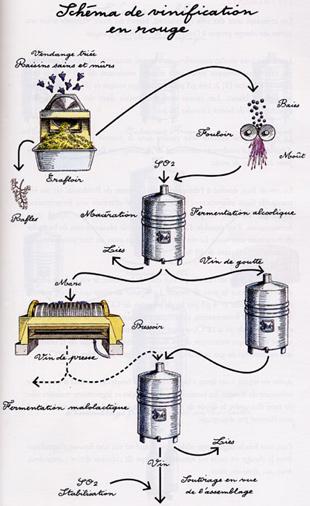 способу производства вино
